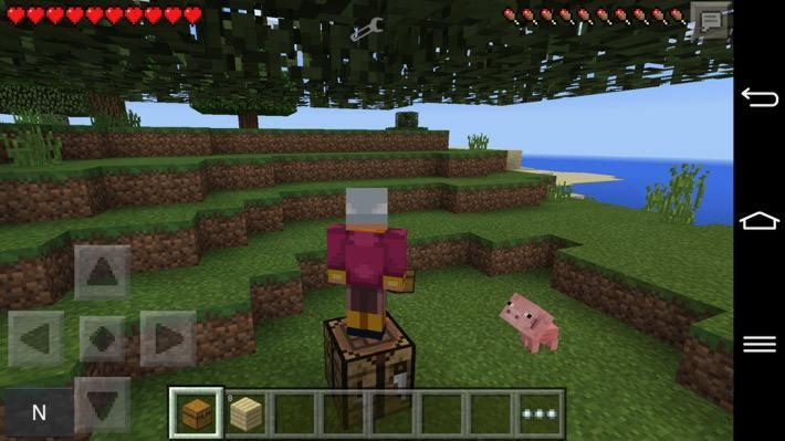 Голод в Minecraft 0.11.1