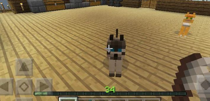 Кот из Майнкрафт 0.12.2