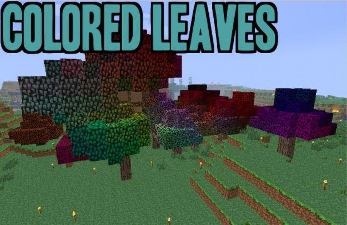Мод на цветные листья
