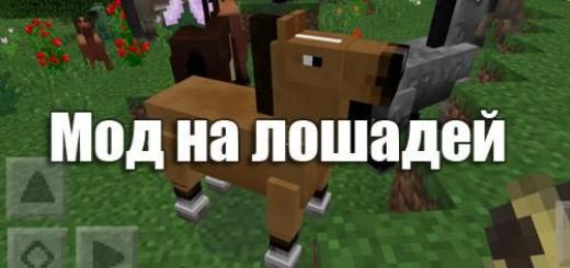 horse-mod-pe
