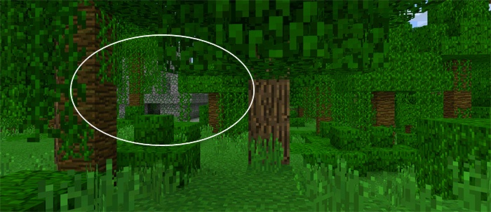 ancient-jungle-temple-in-front-of-spawn-5