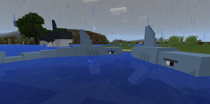 Парочка акул в реке
