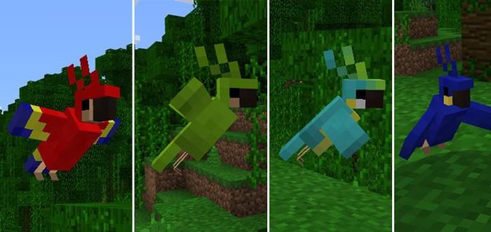 Красный, зеленый, светло-голубой и синий попугаи