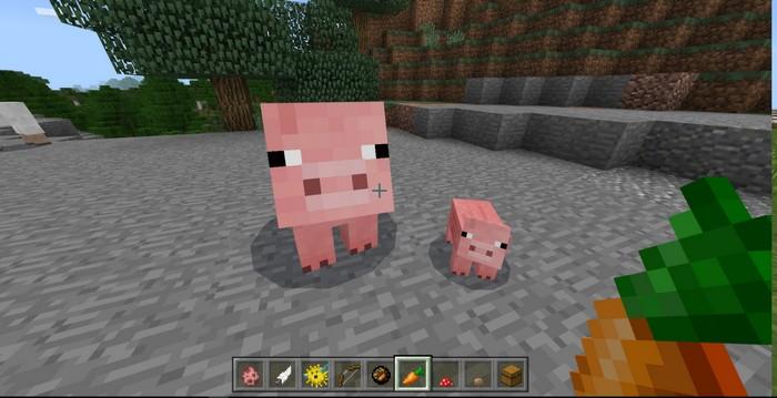Маленькая и большая свинка