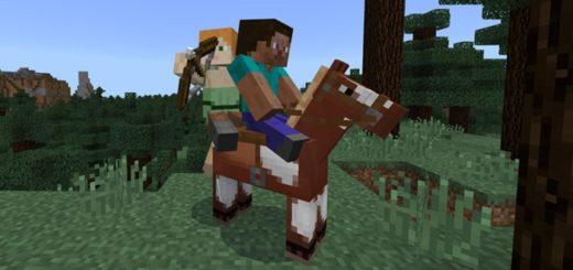 Второй игрок использует лук на лошади