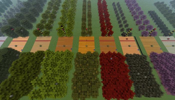 Автоматические фермы